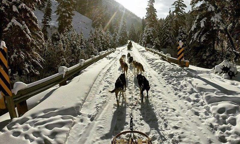 Bozeman Winter Vacation