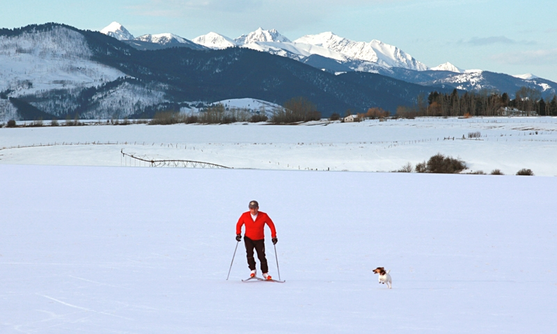 Skate skiing with a dog in Bozeman Montana.