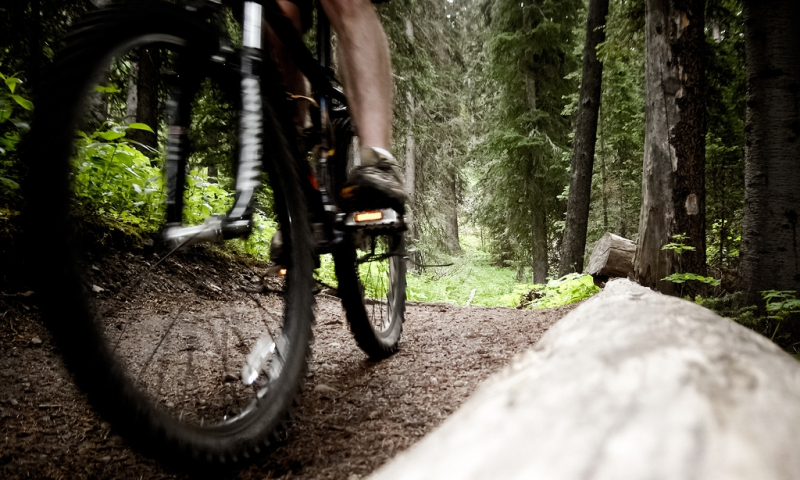 Bozeman Mountain Biking