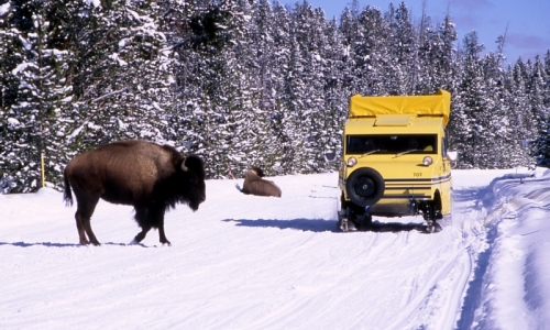 Bozeman Yellowstone Snowcoach